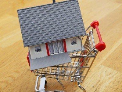 Bild: Haus im Einkaufswagen